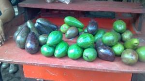 Nicaragua 6- 2012 036