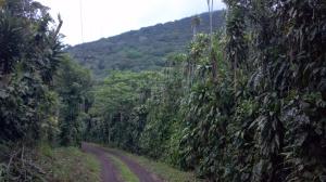 Nicaragua 6- 2012 063